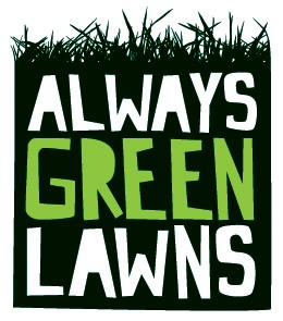 Always green lawns ltd Logo with grass on top and white and green lettering